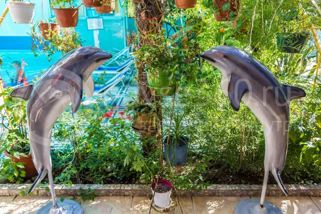 Отель Дельфин в Сочи 3