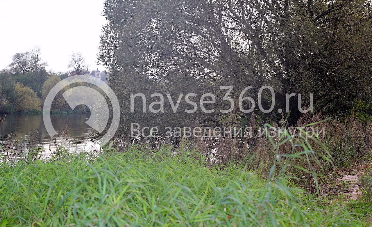 вид на москвы-реку усадьба петровское