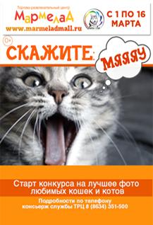 """Фотоконкурс """"Скажите мяяяяу"""""""