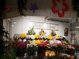 Крона, сеть оптово-розничных салонов цветов