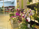 Цветок, студия флористики