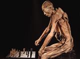 """Выставка """"Тайны тела. Вселенная внутри"""""""