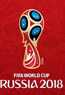 Презентация волонтерской программы Чемпионата мира по футболу FIFA 2018 в России