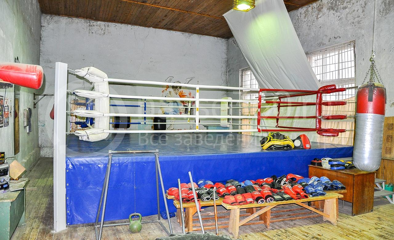 Бокс в Дубне