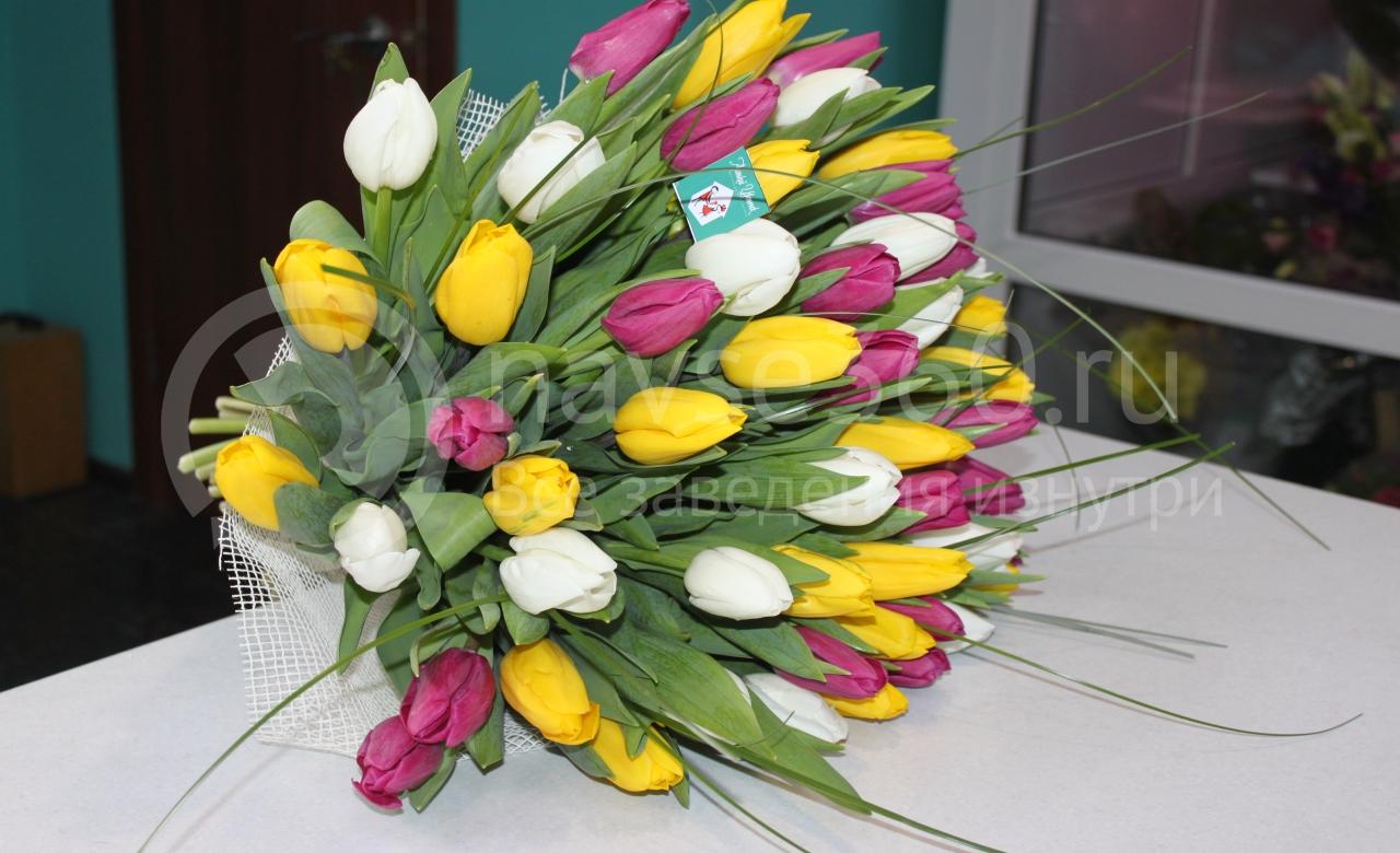 Аленький Цветочек тюльпаны