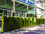 Хмели Сунели, ресторан